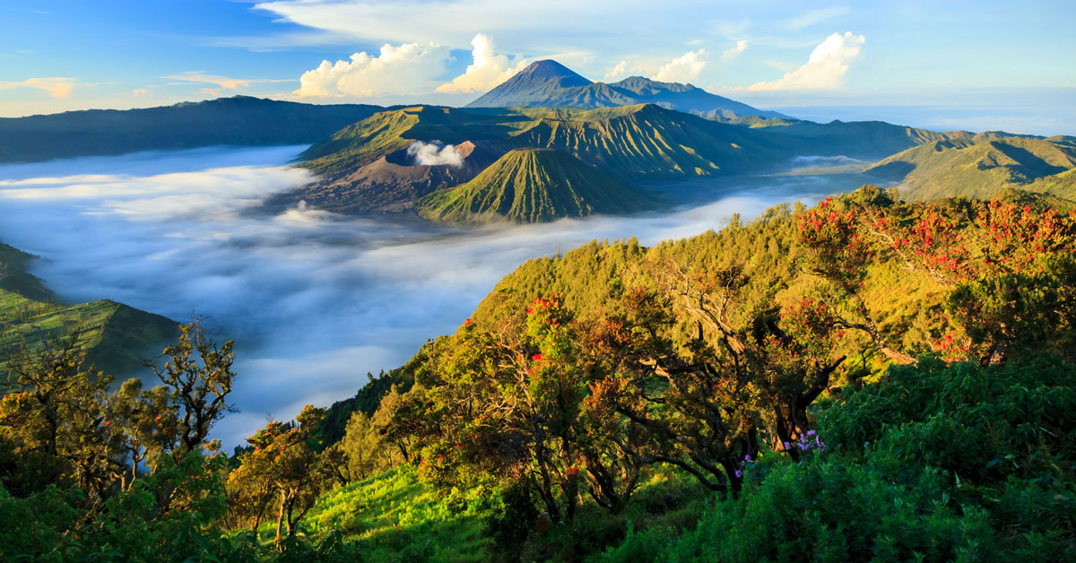 Last minute Indonézia